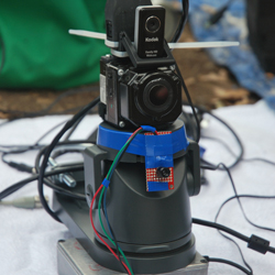 project_cameratrap